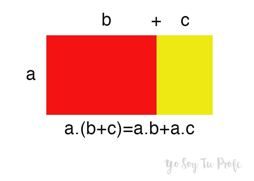 Producto de polinomios yo soy tu profe