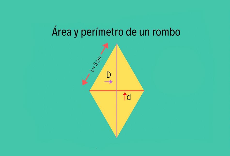área y perímetro de un paralelogramo
