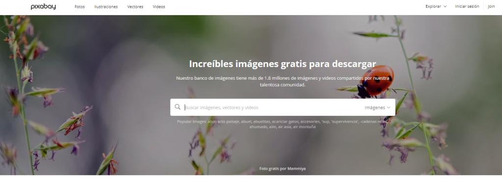 bancos de imágenes